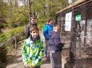 Klettern und Tiergarten Halberstadt_2