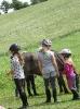 Pony Tag_4